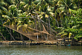 Republic of India, Kerala State, Fishing net hanging over the water, palm trees