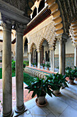 Spain, Andalusia, Seville, Alcazar, Patio de la las Doncellas