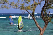 Indian ocean, Mauritius, Windsurfing