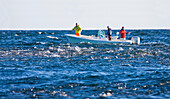 Fishermen on boat near a school of striped bass, montauk new york usa