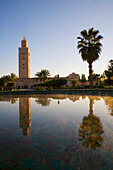 Minaret Of Koutoubia Mosque And Palm Tree Reflected In Fountain At Dawn, Marrakesh,Morocco