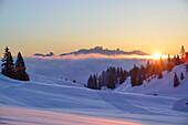 Sunrise over Dachstein range, near Arthurhaus, Hochkoenig, Berchtesgaden range, Salzburg, Austria