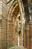 Windows in the ruins of Elgin Cathedral, Elgin, Moray, East Coast, Scotland, Great Britain, United Kingdom