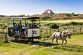 Horse drawn train, Spiegeroog Island, Nationalpark, North Sea, East Frisian Islands, East Frisia, Lower Saxony, Germany, Europe