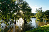 River Saale at sunset, Flood water, Jena, Thuringia, Germany