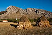 Hay stacks near the village of Rimetea, Alba, Transylvania, Romania
