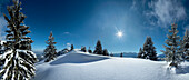 Snowy scenery at mount Purschling, Ammergau Alps, Upper Bavaria, Bavaria, Germany