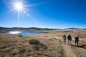 Three hikers near Pretty Valley Pondage, Alpine National Park, Australian Alps, Victoria, Australia