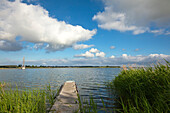Jetty on the Achterwasser, near Neppermin, Usedom island, Baltic Sea, Mecklenburg Western-Pomerania, Germany