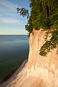 Chalk cliffs, Jasmund National Park, Ruegen island, Baltic Sea, Mecklenburg Western-Pomerania, Germany