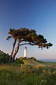 Lighthouse at Dornbusch, Hiddensee island, National Park Vorpommersche Boddenlandschaft, Baltic Sea, Mecklenburg Western-Pomerania, Germany