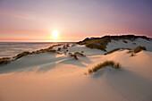 Dunes on the beach, Kniepsand, Amrum island, North Sea, North Friesland, Schleswig-Holstein, Germany