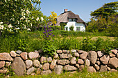 Stone wall in front of a frisian house with thatched roof, Nebel, Amrum island, North Sea, North Friesland, Schleswig-Holstein, Germany