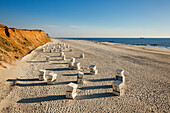 Beach chairs at Rotes Kliff, near Kampen, Sylt island, North Sea, North Friesland, Schleswig-Holstein, Germany