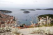 Idyllische Hafenstadt, Hvar, Dalmatien, Kroatien