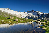 View over a mountain lake to Schwarzenstein and Dritte Hornspitze, Zillertal Alps, valley Zillertal, Tyrol, Austria