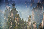 China, Hunan Province, Zhangjiajie, Wulingyuan Scenic Area, Zhangjiajie National Forest Park, Unesco world Heritage