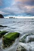 Incoming tide flows through algae covered boulders, dawn, Paparoa National Park, West Coast, New Zealand