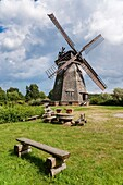 Dutch windmill from the 19th Century Until 1971, the windmill was used From 1973 to 1984 lived and worked here, the artist Otto Niemeyer-Holstein Now the mill is a museum, Benz, Usedom Island, County Vorpommern-Greifswald, Mecklenburg-Western Pomerania, G