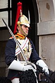 British, cavalry, England, English, Europe, European, G.B., Great Britain, guard, Horse Guard, household, London, queen, Royal Guard, sabre, sentry, soldier, sword, tradition, traditional, uniform, United Kingdom, Whitehall, Y9R-1855704, AGEFOTOSTOCK