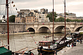 Pont Neuf, Ile de la Cite, Paris, France, Europe, UNESCO World Heritage Sites (bank of Seine between Pont de Sully und Pont d'Iena)