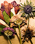 Arrangement of Pressed Flowers