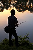 Black Bass Fisherman At Dawn, No-Kill Fishing With The Fish Being Immediately Returned To The Water, Douy Lake Near Chateaudun, Eure-Et-Loir (28), France