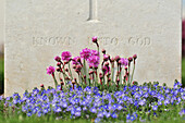 Commonwealth Cemetery For British Soldiers Killed During The First World War, Somme (80), France
