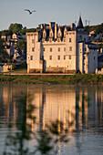 Chateau And Historical Village Of Montsoreau On The Loire River, Maine-Et-Loire (49), France