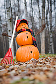 Jack-O-Lantern Man Wearing A Red Hunting Cap And Plaid Scarf Raking Fallen Leaves In A Birch Forest With Fallen Leaves On The Ground During Fall In Anchorage, South Central Alaska.