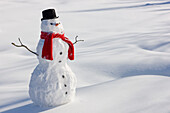 Snowman With A Red Scarf And Black Top Hat Sitting Next To A Snow Covered River Bed, Southcentral Alaska, Winter