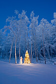 Snowman With Red Scarf And Black Top Hat Standing Next To A Christmas Tree, Snow Covered Birch Forest, Winter, Eagle River, Alaska, Usa.