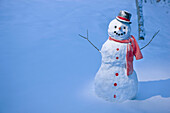 Snowman With Red Scarf And Black Top Hat Standing In Front Of Snow Covered Birch Forest, Winter