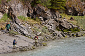 Three Fisherman Leave The Shores Of Bird Creek As A Brown Bear Approaches Along The Shoreline, Southcentral Alaska