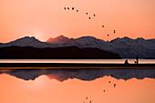 Composite: Beachcombers Watch Migrating Birds During Sunset At Eagle Beach Recreation Area Near Juneau, Southeast Alaska, Spring