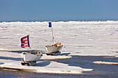 Two Inupiaq Eskimo Skin Boats (Umiaqs)On Ice Have Flags Raised As Part Of The Apugauti Celebration, Chukchi Sea Apugauti, Barrow, Arctic Alaska, Summer