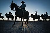 'Silhouette of cowboys on horses; tarifa cadiz andalusia spain'
