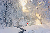 'A snowman wearing a red scarf and black top hat standing in the snow next to a small stream in a hoar frost covered forest rays of sun filtering through the fog in the background russian jack park; anchorage alaska united states of america'