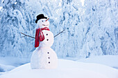 'Snowman in red scarf and black top hat standing amongst hoar frosted trees in russian jack springs park; anchorage alaska united states of america'