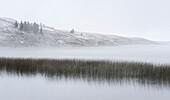 'Winter over elkwater lake in cypress hills provincial park;Alberta canada'