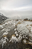 'Ice Crystals Forming Along The Shoreline Of Kathleen Lake In Kluane National Park;Haines Junction Yukon Canada'