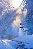 Snowman standing next to a stream with sunrays shining through fog and hoar frosted trees in the background, Russian Jack Springs Park, Anchorage, Southcentral Alaska, Winter. Digitally enhanced.