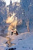 Husband and wife building a snowman in a frosty forest and backlit by sunrays, Russian Jack Springs Park, Southcentral Alaska, Winter