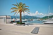 Port of Montenegro, new luxury Yacht Port, Tivat, Bay of Kotor, Adriatic coastline, Montenegro, Western Balkan, Europe