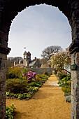 View of garden, Sark, Channel Islands, England