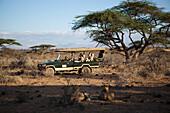 Guests on Jeep safari at luxurious Joy's Camp, Shaba National Reserve, Kenya