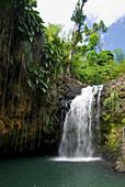 Annandale waterfall, Grenada. © Ian Cumming / Axiom