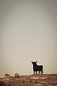 Bull silhouette, classic symbol of roads, La Rioja, Spain