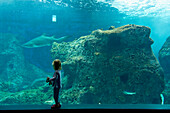 Young girl looking at shark and other fish in large tank in Cretaquarium, Crete, Greece