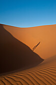 Shadow of man running up sand dune in Erg Chebbi near Merzouga, Sahara Desert, Morocco